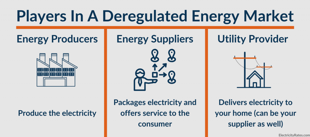 Players in a deregulated energy market